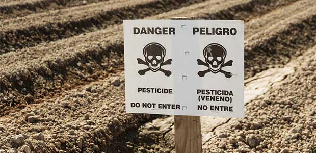 Alternatives to Chlorpyrifos Work Group Is Making Pest Management Safer and More Sustainable